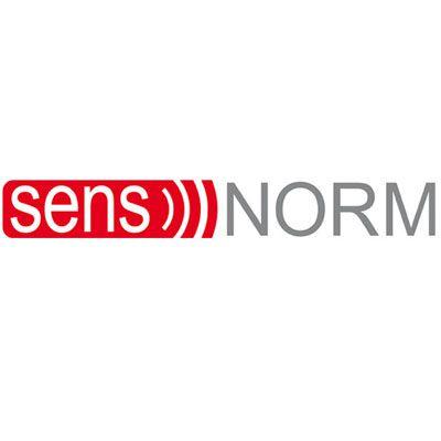 SensNorm, Bern 8, (133477)